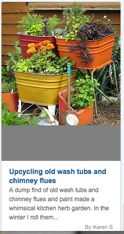 Washtubs repourposed as planters.