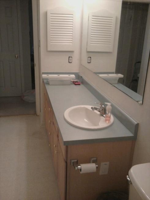 Bathroom before pic.